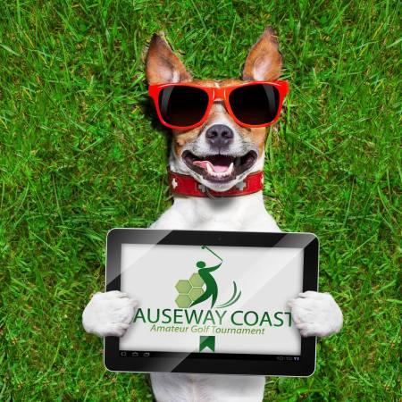 digital-dna-causeway-coast-golf